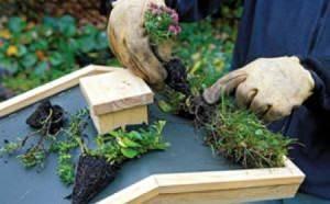 поделки в сад своими руками